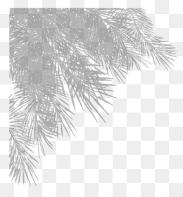 Christmas Leaves Png Christmas Leaves Pattern Christmas