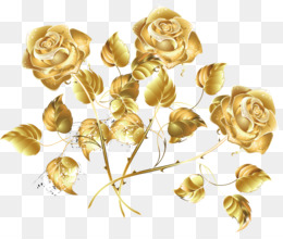 Golden Rose Png Golden Rose Color Golden Rose Logo Golden
