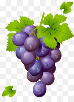 Free Pictures Of Red Grapes, Download Free Clip Art, Free Clip Art on  Clipart Library