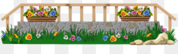 Flower Borders