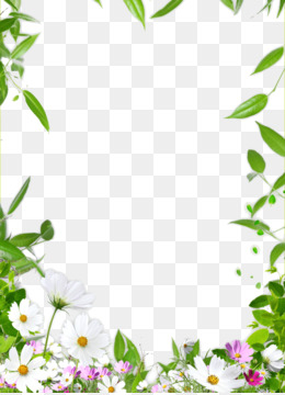Flower Boxes Png Flower Flowers Watercolor Flower