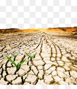 Dry Floor Images, Stock Photos & Vectors | Shutterstock