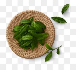 Leaf Green Tea