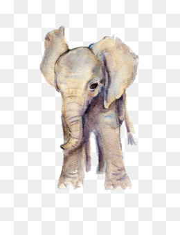 Elephants Png And Elephants Transparent Clipart Free Download Cleanpng Kisspng In addition, all trademarks and usage rights belong to the related. elephants png and elephants transparent
