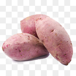 Yam Png Candied Yams Yam Farming White Yam Sweet Potatoes And Yams Yam Color Yam Foo Foo Cleanpng Kisspng Konjac dietary fiber glucomannan japanese cuisine organic food, yam png clipart. yam png candied yams yam farming