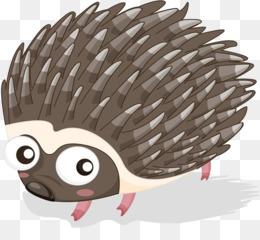 Hedgehog Porcupine