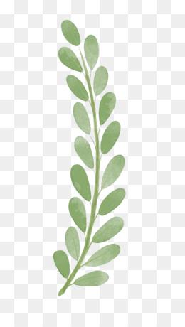 Cartoon Leaf Png And Cartoon Leaf Transparent Clipart Free Download Cleanpng Kisspng