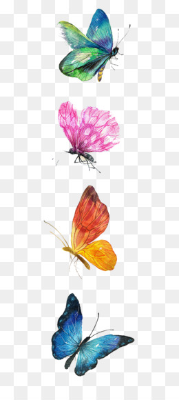 Watercolor Butterfly Background
