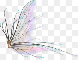 kisspng fairy wings drawing butterfly 5aa4db56b8e987.7724781315207534947574