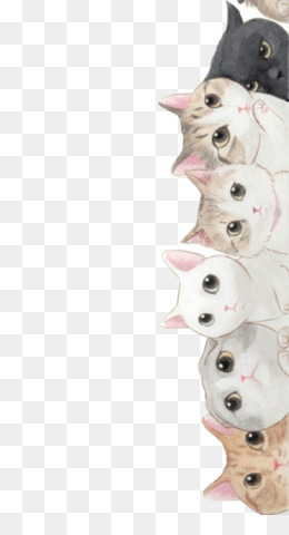Cats And The Internet Png And Cats And The Internet Transparent Clipart Free Download Cleanpng Kisspng