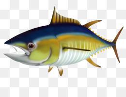 Fish Cartoon png download - 800*530 - Free Transparent Tuna png Download. -  CleanPNG / KissPNG