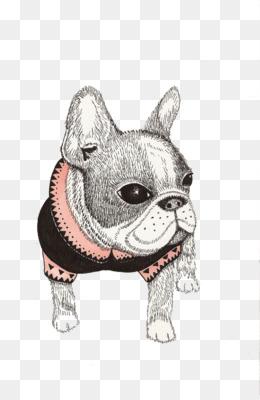 Bulldog Drawing