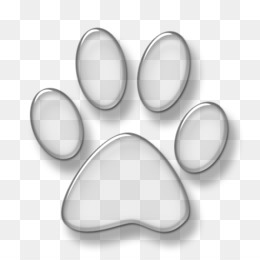 Pawprint Png And Pawprint Transparent Clipart Free Download Cleanpng Kisspng From wikimedia commons, the free media repository. pawprint png and pawprint transparent