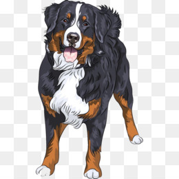 Appenzeller Sennenhund Png And Appenzeller Sennenhund