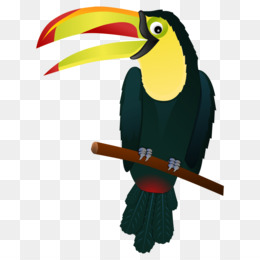 Toco Toucan Png And Toco Toucan Transparent Clipart Free Download Cleanpng Kisspng