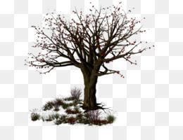 Halloween Tree Branch