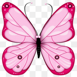 Free Download Butterfly Clipart Cleanpng Kisspng