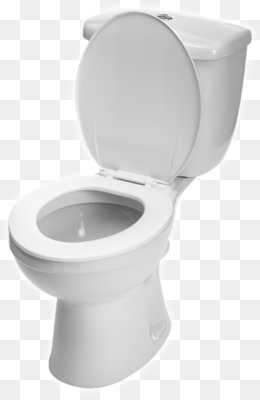 Toilet Seat Up Or Down.Toilet Seat Png Toilet Seat Down Toilet Seat Up