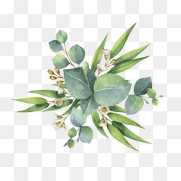Dollar Tree Succulent Wreath