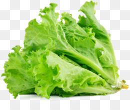Fruit Salad Chinese Chicken Macaroni Coleslaw - Romaine Lettuce - Image  Transparent PNG
