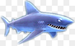 Collecta SQUALI Mako Shark