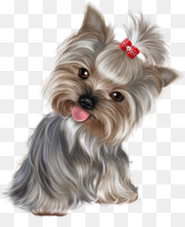 Yorkshire Terrier Png Yorkshire Terrier Dog Yorkshire Terrier Vector Yorkshire Terrier Silhouette Yorkshire Terrier Puppies Cartoon Yorkshire Terrier Yorkshire Terrier Cartoon Characters Yorkshire Terrier With Long Ears Yorkshire Terrier Drawings
