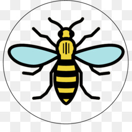 Manchester Bee Background