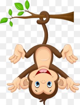 Monkey Png Cartoon Monkey Baby Monkey Cute Monkey