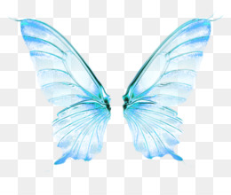 Fairy Wings Background