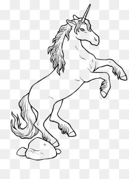 Unicorn Libro Da Colorare Png Trasparente E Unicorn Libro Da