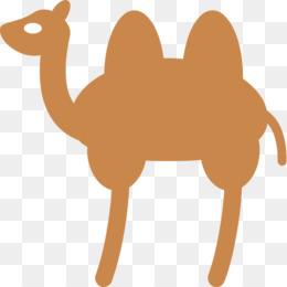 Bactrian Camel Livestock