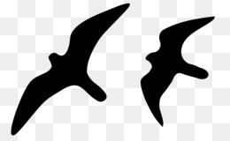 Bird Line Drawing