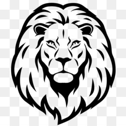 White Lion Png Black And White Lion Cleanpng Kisspng Lion symbol outline animal outline lion face drawing. white lion png black and white lion