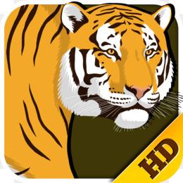 Tiger Cartoon