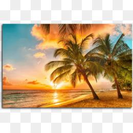 Caribbean Beach Png Caribbean Beaches Caribbean Beach