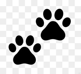 Free Download Dog And Cat Png Snow leopard wolf drawing national geographic animal jam, leopard png. clean png