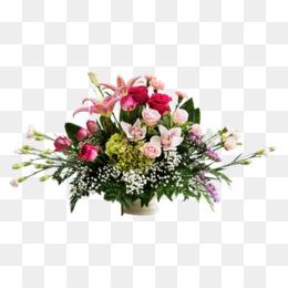Bunga Mawar Png Bunga Mawar Biru Bunga Mawar Pink Bunga Mawar