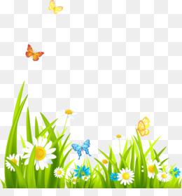 Summer Flower Background