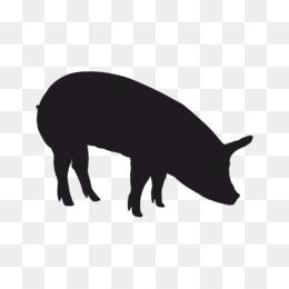 Cochon Png And Cochon Transparent Clipart Free Download Cleanpng Kisspng
