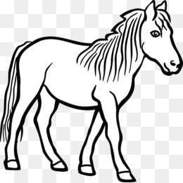 Pony Art Png And Pony Art Transparent Clipart Free Download Cleanpng Kisspng