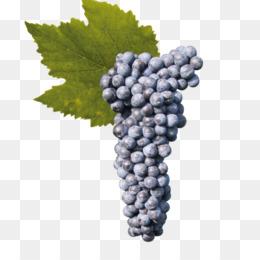 Grapes Cartoon
