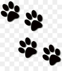 Paw Print Png Dog Paw Print Cat Paw Print White Paw Print Paw Print Border Paw Print Background Pink Paw Print Heart Paw Print Black Paw Print Paw Print Tracks Paw Free cliparts that you can download to you computer and use in your designs. paw print png dog paw print cat paw