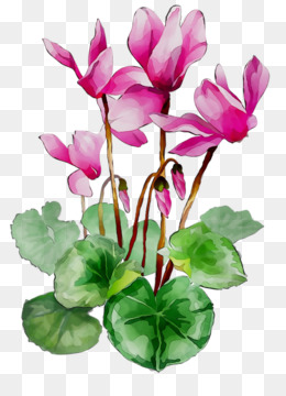Water Paint Flowers