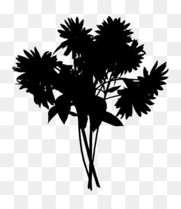 Palm Tree Silhouette