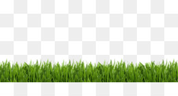 free download green grass background png cleanpng kisspng clean png