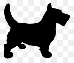 Scotty dog coloring page How to draw a scottie dog scottie dog scottish  terrier dog | Kirsteni.lesoleildefontanieu.com