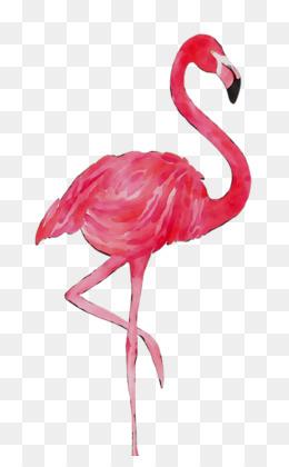 Flamingo Bird Png For Flamingo Bird Silhouette Flamingo Bird