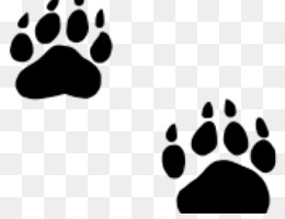 Bear Paw Png Grizzly Bear Paw Polar Bear Paw Polar Bear Paw Print Cleanpng Kisspng Please wait while your url is generating. bear paw png grizzly bear paw polar