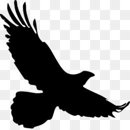 Burung Merpati Png And Burung Merpati Transparent Clipart Free