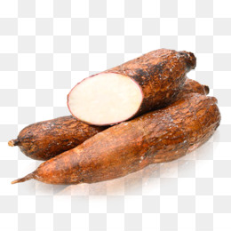 Cassava Tuber Food Starch South American cuisine
